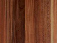 blaty kuchenne -  Śliwa Czerwona R 5605 W